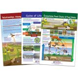 Ecology Bulletin Board Chart Set, Grades 3-5