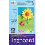 Colorwave® Super Bright Tagboard, 12 x 18, 100 sheets