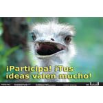 Spanish Fun Photo Posters, Set #10