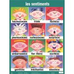 Essential Classroom Posters, Set I, French