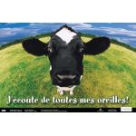 Fun Photo Posters, Set #5, French