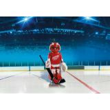 DETROIT RED WINGS GOALIE