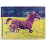 Horse & Foal 25 Piece Jigsaw Puzzle