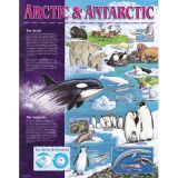 Ecosystem SharpChart, The Arctic Antarctic