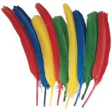 Quill Feathers, 24/pkg