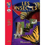 Les insectes - collection