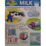 Milk-From Farm to Table
