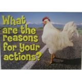 What Are the Reasons …Poster