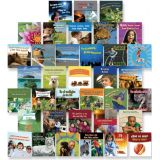 Bilingual Board Books, Set of 36