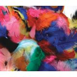 Feathers, Hot Colors