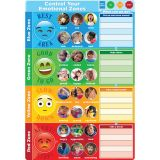 CONTROL YOUR EMOTIONS 13IN X 19IN SMART POLY CHART