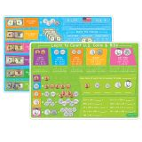 US MONEY&COINS LEARNING MAT 2 SIDED WRITE ON WIPE OFF