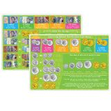 10PK AUSTRALIAN MONEY LEARNING MAT 2 SIDED WRITE ON WIPE OFF