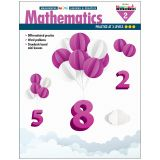 MINI LESSONS & PRACTICE MATH GR 2 MEANINGFUL