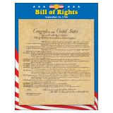 LEARNING CHART BILL OF RIGHTS