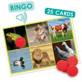 Bingo: Animals and Nature