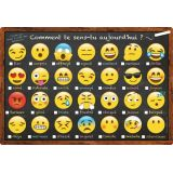 French Emoji How Are You Feeling Smart Poly™ Chart 13 x 19