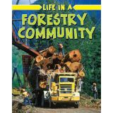 Life In A Forestry Community -Rural Life
