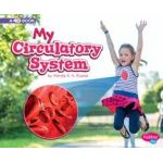 My Body Systems Series - 4D Books