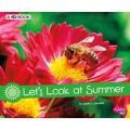 Let's Look at Summer - 4D Book