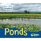 Ponds - Water, Water Everywhere
