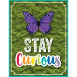 Stay Curious Chart