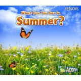 What Can You See in Summer?