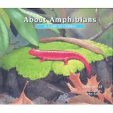 About Amphibians: A Guide for Children
