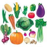 Healthy Food Flannelboard Set - Vegetables (16pcs)