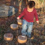Wood Stepping Stump Set Of 5 Heights