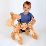 Wooden Octoplay 20Pcs