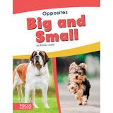 Big And Small-Opposites