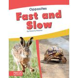 Fast And Slow-Opposites