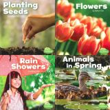 Celebrate Spring Series (Set of 4)