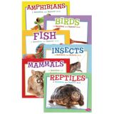 Pebble Animal Kingdom Q&A Series (Set of 6)