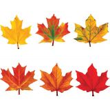 Classic Accents Variety Pack - Maple Leaves (6 designs, 6 of each)