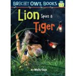 Bright Owl Book Series