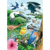 North American Birds Tray Puzzle