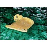 Animal Mats, 48 x 36, Yellow Sea Otter