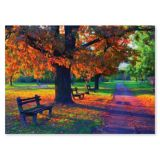 Walk in the Park Cardboard Jigsaw Puzzle - 1500 Pieces