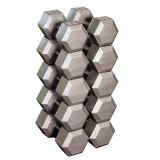 Individual Cast Hex Dumbell, 10 lbs.