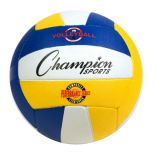 Performance Series Multi-Color Pro Rubber Volleyball