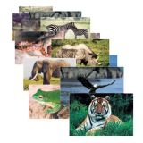 Wild Animals Poster Set