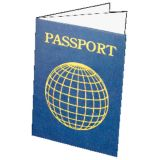 Blank Passports, Pack of 12