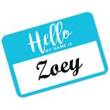 Avery® Removable Adhesive Hello My Name Is Name Tags, Assorted Colors