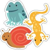 Nature Explorers Colorful Cut-Outs®, Frogs, Lizards & Snails