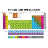 Periodic Table 13 x 19 Smart Poly™ Chart
