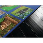Alphabet Animals PhotoFun Rug™, 6' x 8'4