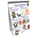 Early Childhood Science Readiness Flip Charts, All About Me
