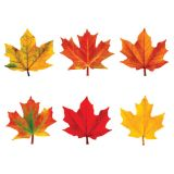 Maple Leaves Mini Accents Variety Pack